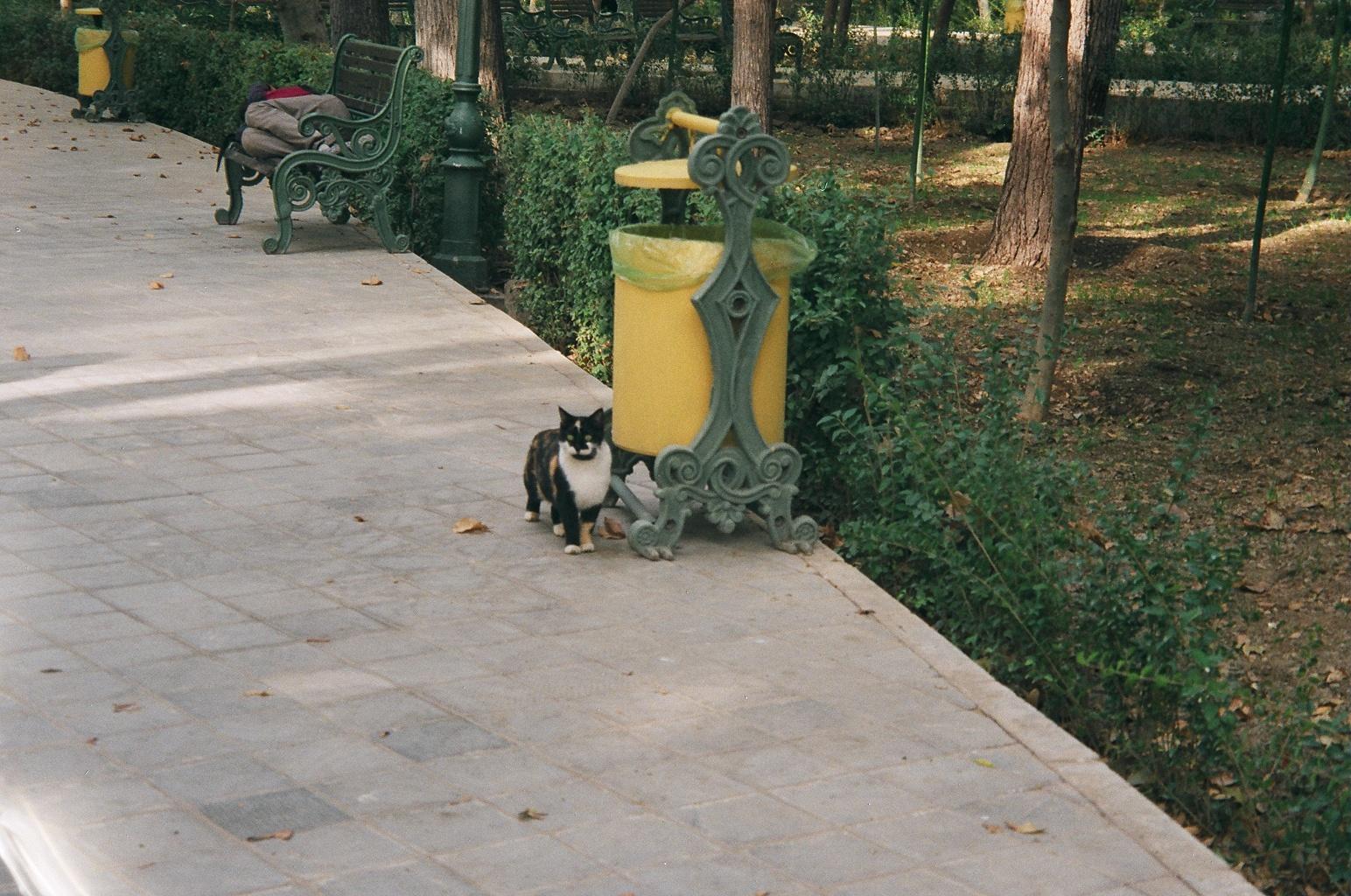 Park-e Shahr, fot. S.Dimtchev