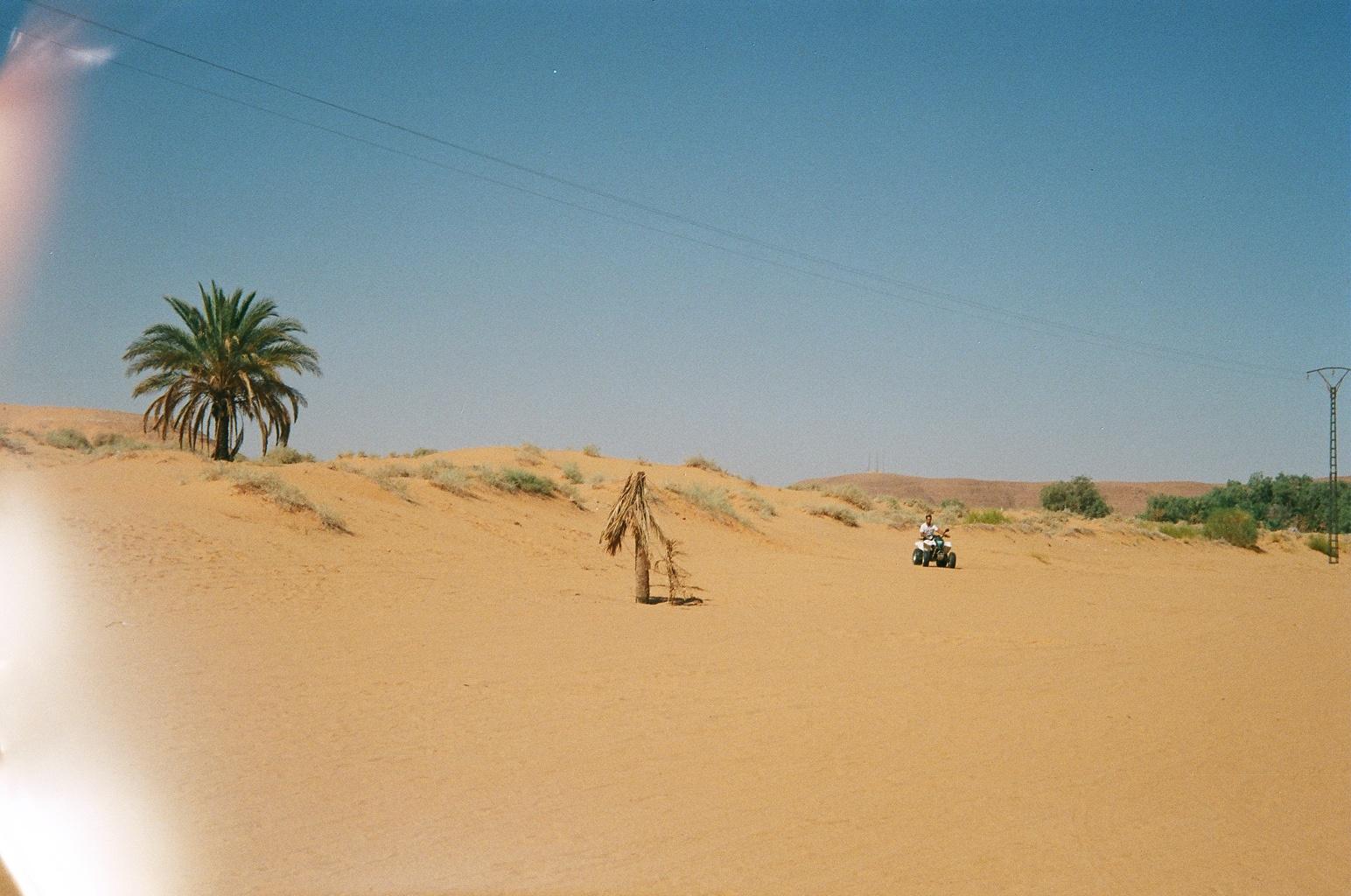 Sahara_quady
